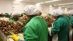 En Lima Metropolitana empleo aumentó 2,1%.