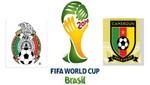 Brasil 2014: México vs Camerún [EN VIVO]