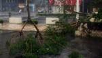 Japón en alerta máxima por tifón Neoguri