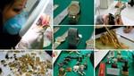 Realizarán la Primera Gran Subasta de joyas decomisadas a Vladimiro Montesinos