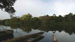 Perú conservó más de dos millones de hectáreas de bosques con bonos de carbono en áreas naturales protegidas