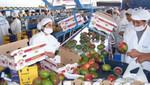 Economía peruana en el primer semestre del año se incrementó en 3,3%