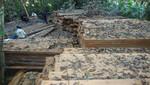 En operativo conjunto, guardaparques del SERNANP recuperan 23 mil pies tablares de madera talada ilegalmente