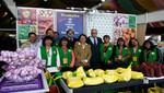 Comerciantes del Gran Mercado Mayorista de Lima participan en Mistura 2014