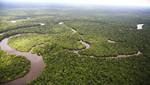 """Madre de Dios es pionera en gobernanza ambiental con aplicación de innovadora iniciativa """"REDD+"""""""