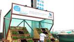 UTEC presenta la primera ecohuerta regada con aire
