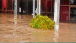 Gobierno declara Estado de Emergencia en distritos de Iñapari, Laberinto y Tambopata, en Madre de Dios