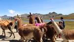 Comunidades de Áncash apuestan por desarrollo de agroturismo en el Parque Nacional Huascarán