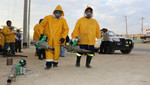 Tumbes: Más de 14 mil viviendas serán fumigadas y abatizadas