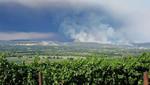 California: incendios forestales arrasan 134.000 hectáreas
