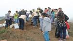 UNACEM plantó más de 350 árboles en Lima Sur beneficiando a más de 2000 pobladores