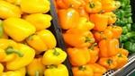 Se abre mercado de capsicum fresco peruano a EE.UU.