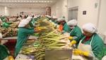 Agroexportaciones mantienen envíos no tradicionales a la UE