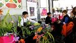 XI Exposición Internacional de Orquídeas vuelve a Miraflores para el disfrute de todos