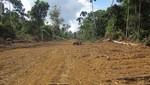 Gobierno Nacional observa  Ley sobre carretera que afecta a Parque Nacional del Manu, nuestra biodiversidad y la Constitución