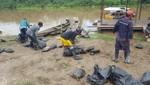 Guardaparques del SERNANP recuperan taricayas extraídas ilegalmente de la Reserva Nacional Pacaya Samiria