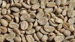 Café verde peruano reingresa a mercado brasilero tras casi un año de haberse suspendido las exportaciones