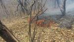 SERNANP: Continúan labores para sofocar incendio forestal en el Parque Nacional Cerros de Amotape