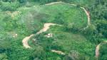Pueblos indígenas de Brasil expresan rechazo a proyecto de carretera Iñapari – Puerto Esperanza