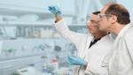 Analítica continúa aportando soluciones para tratar el cáncer
