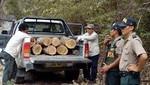 Intensifican operativos contra tala ilegal en el Parque Nacional Cerros de Amotape