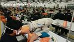 Más del 60% de las empresas manufactureras realizaron alguna actividad con fines de innovación