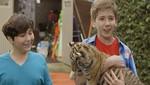 Vuelve en enero El Cine Club de Discovery Kids