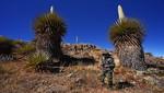 Por qué el Santuario y Reserva Nacional de Calipuy son los nuevos atractivos turísticos en la Libertad