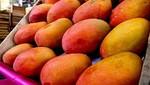 Tubérculos y frutas experimentan baja de precios en mercados mayoristas