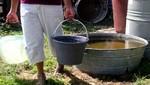 SUNASS: agua empozada puede albergar virus del dengue