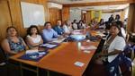 Minsa: ONG se suman a las acciones para combatir la anemia en el país