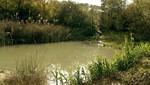 España sigue incumpliendo las Directivas europeas en materia de aguas