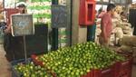 MML informa que se normaliza abastecimiento y precio del limón en el Gran Mercado Mayorista de Lima