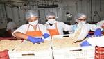 USIL procesa alimentos nutritivos para damnificados por huaicos e inundaciones