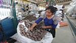 Se anuncia disminución en el precio de alimentos gracias al normal abastecimiento en GMML