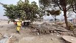 MML fumiga viviendas en centros poblados de Huachipa ante amenaza de enfermedades infectocontagiosas