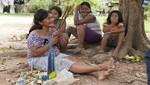 Comunidades nativas de la Reserva Comunal Amarakaeri implementarán actividades económicas sostenibles