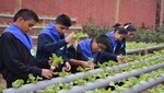 Sunass apoya la educación ambiental en niños y jóvenes