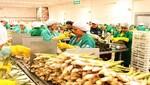 Adex plantea pacto público-privado de alto nivel para consolidar recuperación económica