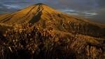 Arequipa: Conozca a la Reserva Nacional Salinas y Aguada Blanca que cumple 38 años beneficiando a peruanos