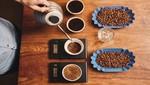 Seis pasos para catar el café