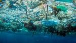 ¿Has oído de las islas de plástico? ¡Podemos revertirlo!