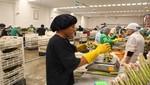 Exportadores de ICA apuntan a fortalecer su presencia en el exterior