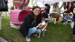 Miraflores organiza mundialito de mascotas