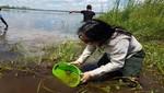 Comunidades nativas realizan liberación de taricayas como parte del trabajo aprovechamiento sostenible