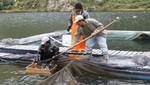 Envío de trucha peruana sigue en alza