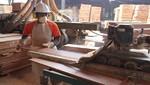 Exportaciones de madera caen por tercer año consecutivo