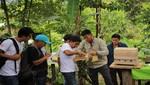 Guardaparques del Bosque de Protección Alto Mayo se capacitan en manejo de abejas nativas