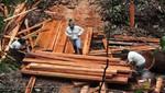 Detienen actividades de tala ilegal al interior del Bosque de Protección San Matías San Carlos