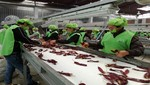 Adex resalta labor de la mujer en la cadena exportadora